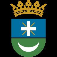 Escudo de AJUNTAMENT DE SEDAVÍ